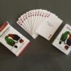 Schnabelwetzen Kartenspiel Rhetorik